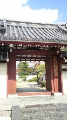 ティーエスピー多田多延子のブログ-2009112110570000.jpg