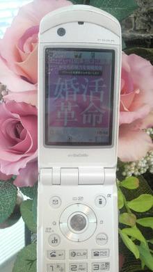 ティーエスピー多田多延子のブログ-2009122510490000.jpg