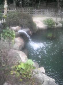 ティーエスピー多田多延子のブログ-2010031413180000.jpg