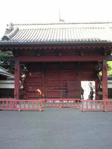ティーエスピー多田多延子のブログ-2010032209120000.jpg