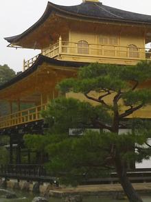 ティーエスピー多田多延子のブログ-2010042213450000.jpg