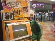 広島LOVEハッピー社長ブログ-101020_171848.jpg