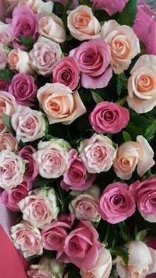 広島をこよなく愛するピンク社長 多田たえこ-2009082718030000.jpg