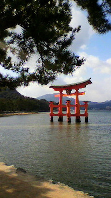 広島をこよなく愛するピンク社長 多田たえこ-2010010113430001.jpg